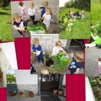 Cepetavčkovi vrtnarji